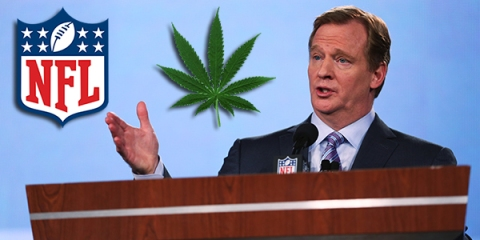 nfl, weed, goodell